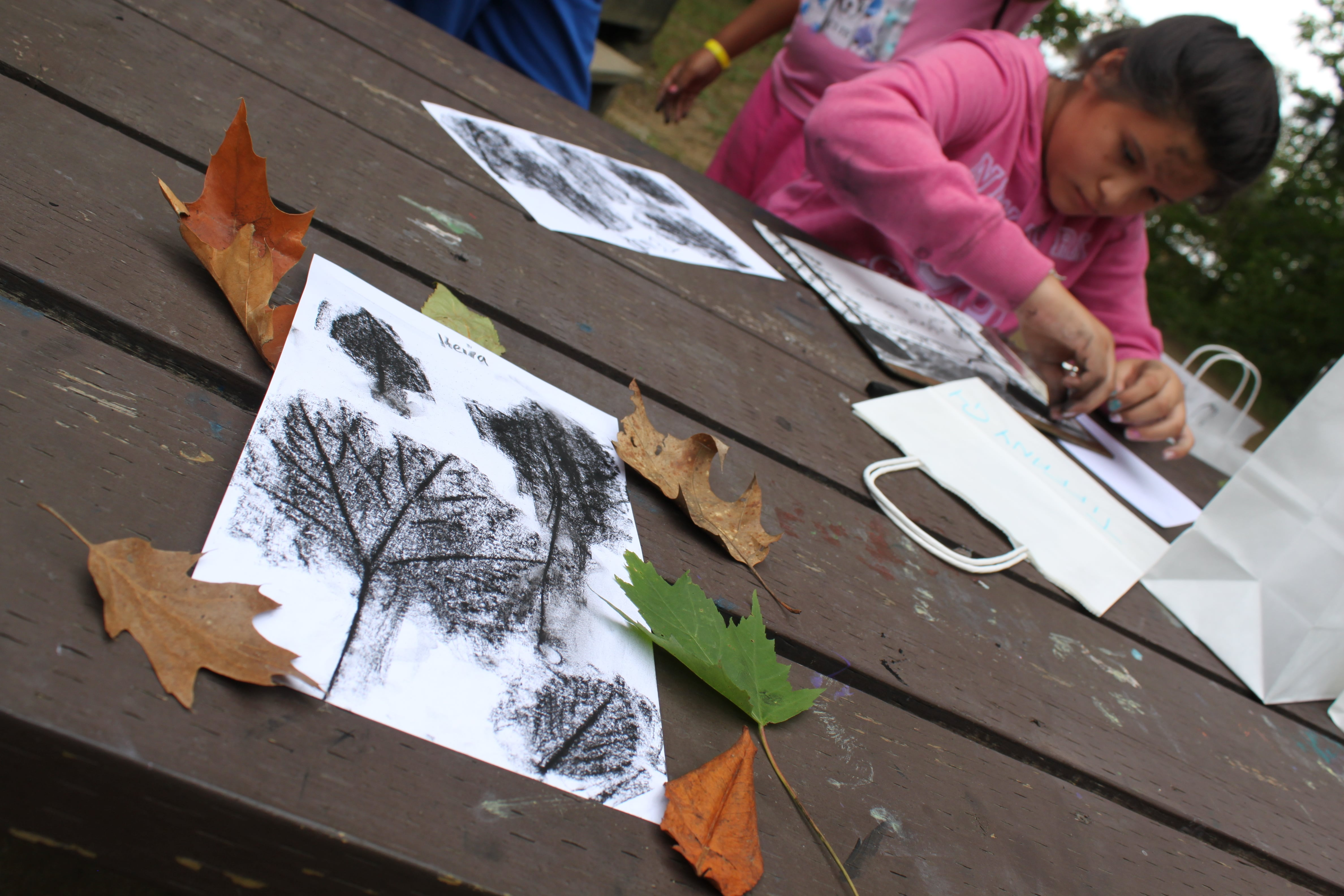 Campers sketch their findings from the natural world.