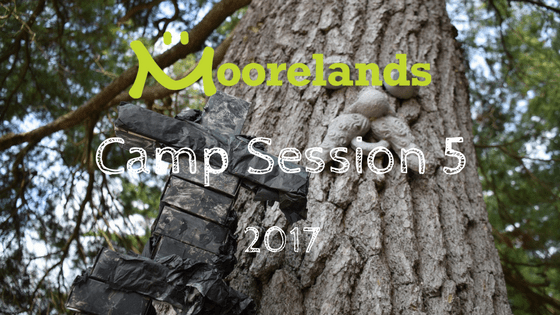 Moorelands Camp 2017 – Photos Session 5
