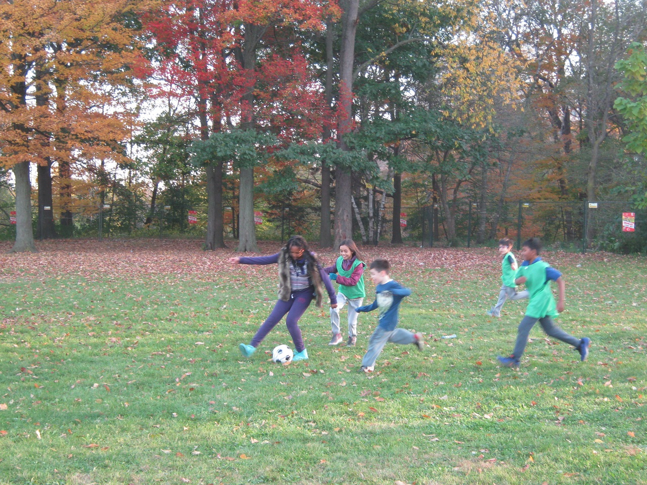 "After-school program back in ""fall"" swing"