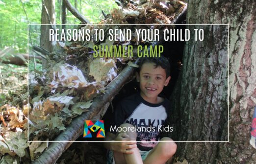 Reasons to send your child to summer camp
